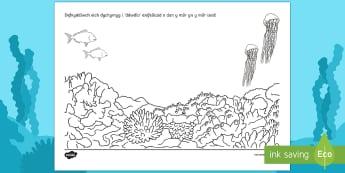 Taflen Weithgaredd Tynnu Lluniau O Dan y Môr - Ar Lan y Môr,Seaside, Under the Sea, under the sea, sea, Sea, seaside, Under the sea, beach, Beach,