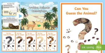 Arabian Animals Camouflage PowerPoint - Science, Living World, Arabian, animals, camouflage, adaptation