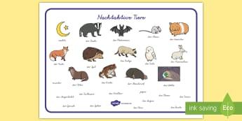 Nachtaktive Tiere Wortschatz: Querformat - Schreibhilfe, Lernhilfe, Nachtaktive Tiere, Sinne, nachts, Wortschatz, nachtaktiv,German