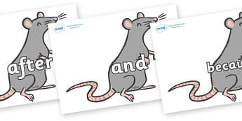 Connectives on Rats - Connectives, VCOP, connective resources, connectives display words, connective displays