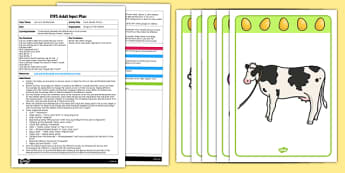 Jack And The Beanstalk Voice Sounds EYFS Adult Input Plan And Resource Pack - plans