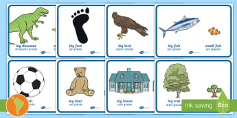 Big And Little Comparison Display Posters US English/Spanish (Latin) - sign, size, sizes, comparing, compare, small, eal