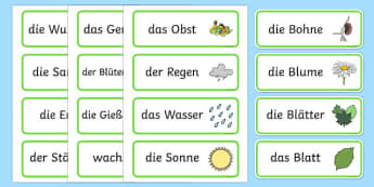 Growth Topic Word Cards German - german, Plant, Growth, Word Card, Topic, Foundation stage, knowledge and understanding of the world, investigation, living things