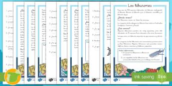 Comprensión lector de atención a la diversidad: Los tiburones - tiburones, tiburón, animal marino, animales, marinos, lectura, leer, lee, comprensión, preguntas,