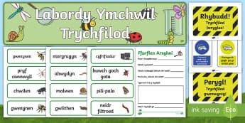 Ymchwiliad Trychfilod Pecyn Chwarae Rôl - WL Social Media Requests in Welsh FP (HIGH PRIORITY)Pecyn Chwarae Rôl, ymchwiliad, ymchwil, trychfi