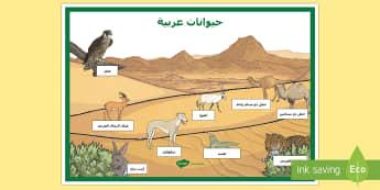ملصق عرض حيوانات عربية - حيوانات، عربي، حيوانات عربية، الحيوانات العربية، الصح