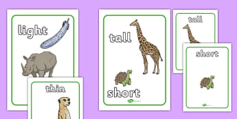Size Comparison Display Posters (Word and Picture) - size comparison, sizes, comparing, display, poster, sign, word and picture, compare, size, big, small, little, short, long, tall, short, pictures, images, activity