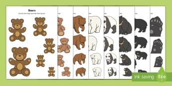 Bear-Themed Size Ordering - EYFS Bears, pandas, teddies, teddy bears, Brown Bear Brown Bear, Going on a Bear Hunt, Goldilocks an