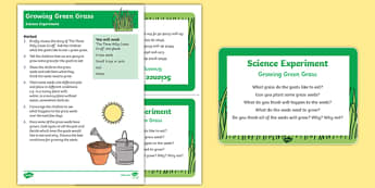 EYFS Growing Green Grass Science Experiment and Prompt Card Pack