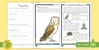 Comprensión lectora: Las lechuzas blancas - animales, aves, búho, lectura, escritura, ave, lechuza, comprensión, lectora, lector, leer, lee, e