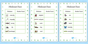 Minibeast Hunt Tally Sheet - minibeast hunt, minibeasts, minibeast hunt sheet, minibeast hunt tally, minibeast theme hunt, tally sheet for minibeast hunt