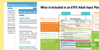 EYFS Adult Input Planning and Resource Pack Overview - What the Ladybird Heard, Julia Donaldson, minibeasts, ladybird, planning, adult plans, adult led, te