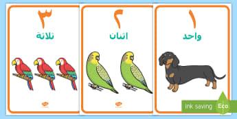 ملصقات أعداد حيوانات أليفة من صفر إلى عشرة - حيوانات أليفة، أعداد، أرقام، حساب، رياضيات، عربي، الأ