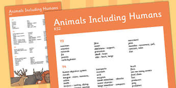 KS2 Animals Including Humans Scientific Vocab Progression Poster