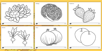 Harvest Festival Themed Colouring Pages - harvest festival, themed, colouring, pages