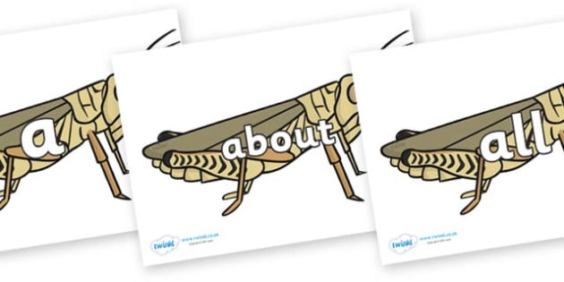 100 High Frequency Words on Grasshoppers - High frequency words, hfw, DfES Letters and Sounds, Letters and Sounds, display words