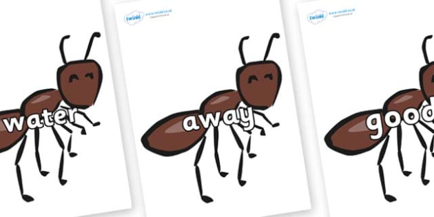 Next 200 Common Words on Ants - Next 200 Common Words on  - DfES Letters and Sounds, Letters and Sounds, Letters and sounds words, Common words, 200 common words
