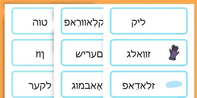Winter Word Cards - seasons, weather, key words, visual aids  - Yiddish