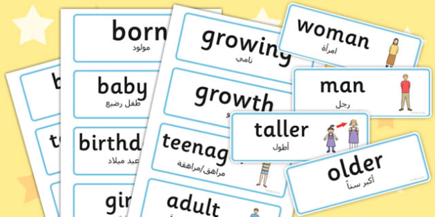 Growth Word Cards Arabic Translation - arabic, growth, word cards, word, cards