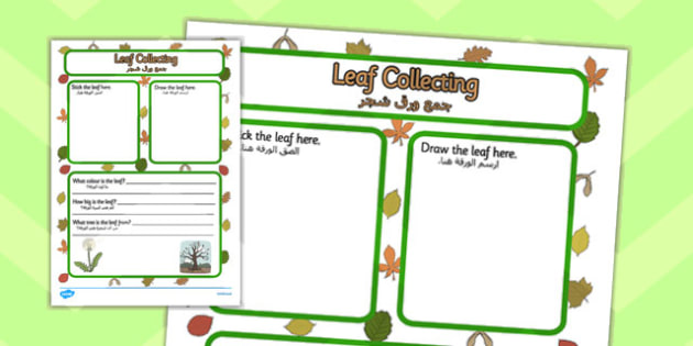Leaf Collecting Writing Frame Arabic Translation - arabic, leaf collecting