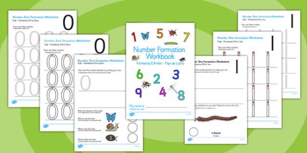 Minibeasts Themed 0-9 Number formation Workbook Romanian Translation - romanian