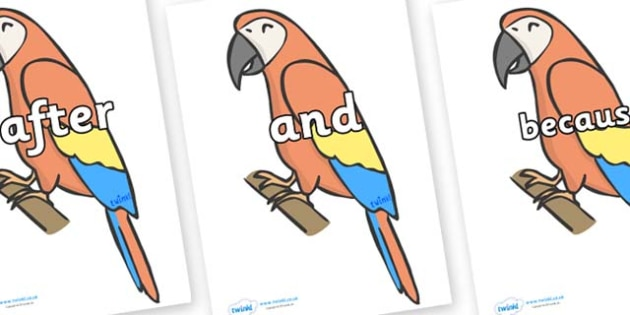 Connectives on Parrots - Connectives, VCOP, connective resources, connectives display words, connective displays
