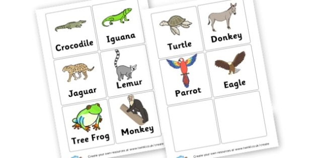 Mexican Animals Cards