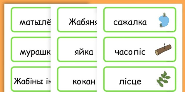 Life Cycle Word Cards - life cycles, lifecycle, visual aid, words - Belarusian