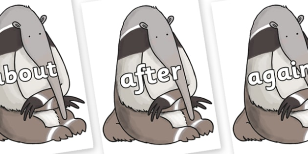 KS1 Keywords on Anteater to Support Teaching on The Great Pet Sale - KS1, CLL, Communication language and literacy, Display, Key words, high frequency words, foundation stage literacy, DfES Letters and Sounds, Letters and Sounds, spelling