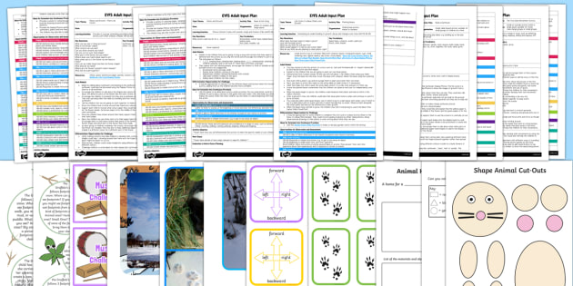 EYFS Adult Input Planning and Resource Pack to Support Teaching on The Gruffalo's Child-Australia - The Gruffalo's Child, Julia Donaldson, winter, snow,footprints,home learning, owl, badger, animals,