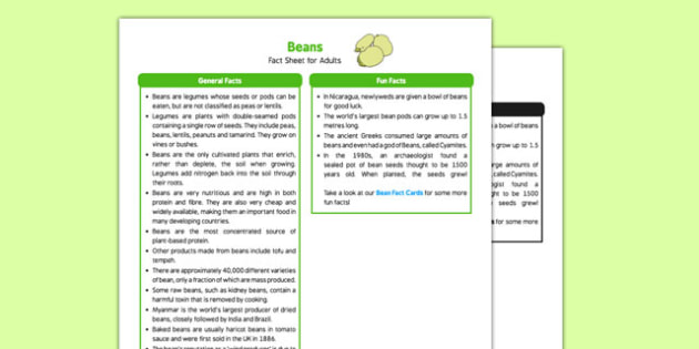 Beans Fact Sheet for Adults - EYFS, Early Years, KS1, Key Stage 1, understanding the world, science, beans, growing
