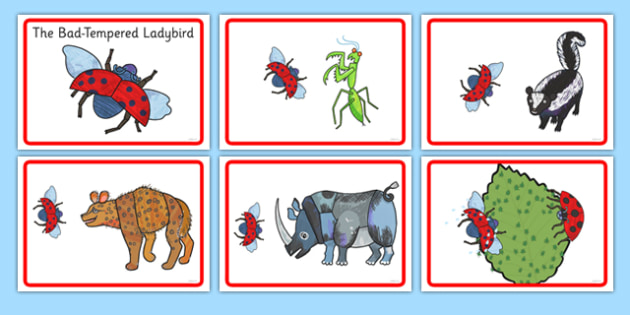 Story Sequencing to Support Teaching on The Bad Tempered Ladybird - storybooks, story