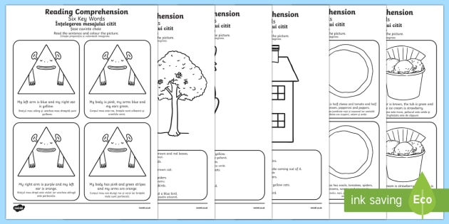 Reading Comprehension Six Key Words Activity Sheet Pack English/Romanian Translation