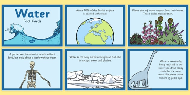 Water Fact Cards - water, fact cards, fact, cards, facts, card