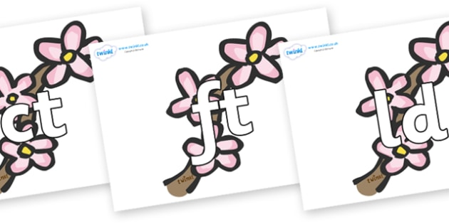 Final Letter Blends on Blossom - Final Letters, final letter, letter blend, letter blends, consonant, consonants, digraph, trigraph, literacy, alphabet, letters, foundation stage literacy