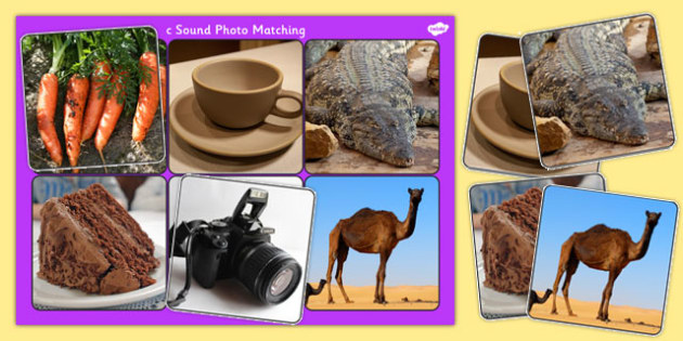 Initial c Sound Photo Matching Board and Cards - sounds, phonics