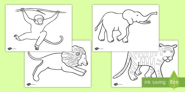 Jungle Animal-Themed Story Colouring Sheets - walking through the jungle, animals, story, book, colouring, fine motor skills, poster, worksheet, vines, A4, display, jungle, animal, lion, tiger, elephant, snake monkey, crocodile