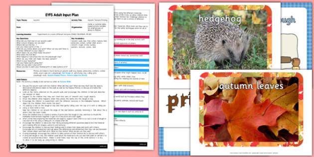 Autumn Texture Printing EYFS Adult Input Plan and Resource Pack