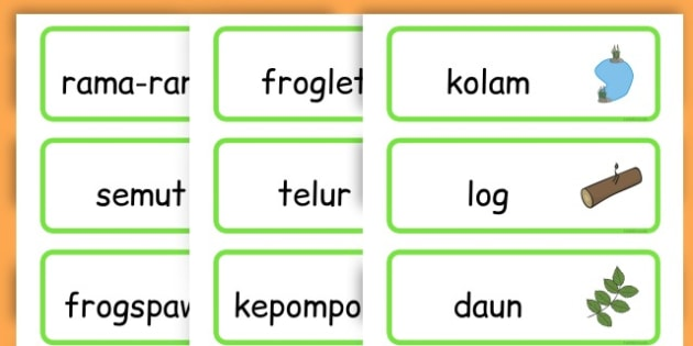 Life Cycle Word Cards - life cycles, lifecycle, visual aid, words - Malay