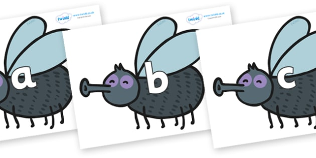 Phase 2 Phonemes on Flies - Phonemes, phoneme, Phase 2, Phase two, Foundation, Literacy, Letters and Sounds, DfES, display