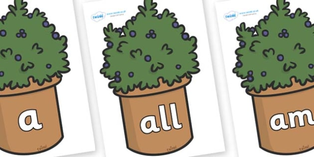 Foundation Stage 2 Keywords on Plants - FS2, CLL, keywords, Communication language and literacy,  Display, Key words, high frequency words, foundation stage literacy, DfES Letters and Sounds, Letters and Sounds, spelling