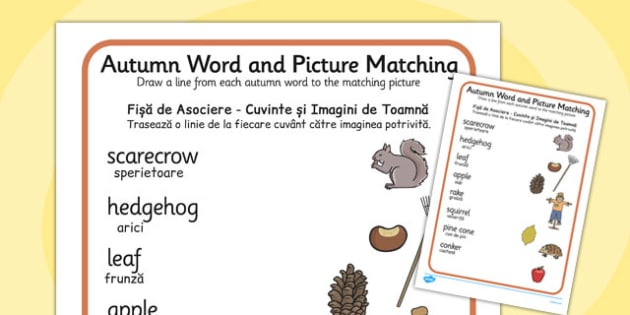 Autumn Word and Picture Matching Worksheet Romanian Translation - romanian