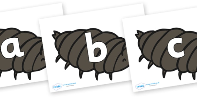 Phoneme Set on Woodlice - Phoneme set, phonemes, phoneme, Letters and Sounds, DfES, display, Phase 1, Phase 2, Phase 3, Phase 5, Foundation, Literacy