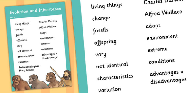 Year 6 Evolution and Inheritance Scientific Vocabulary Poster