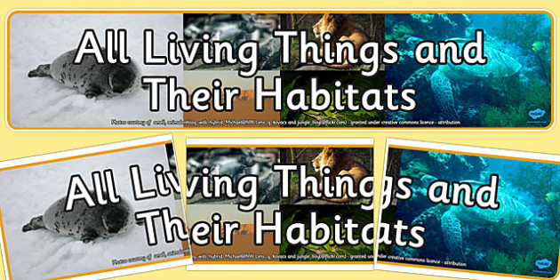 All Living Things and Their Habitats Photo Display Banner - habitats, living things, photo display banner, display banner, photo banner, display header