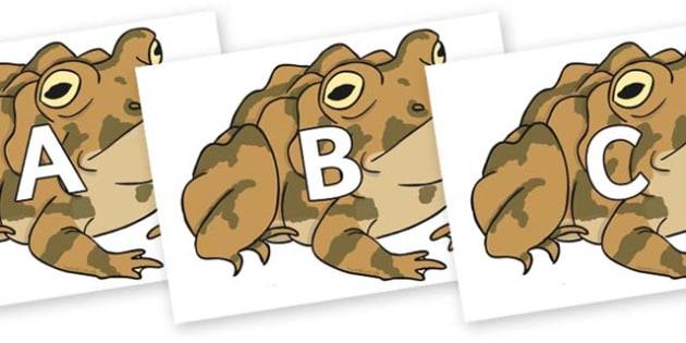 A-Z Alphabet on Toad - A-Z, A4, display, Alphabet frieze, Display letters, Letter posters, A-Z letters, Alphabet flashcards