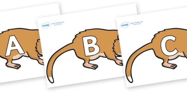 A-Z Alphabet on Hamsters - A-Z, A4, display, Alphabet frieze, Display letters, Letter posters, A-Z letters, Alphabet flashcards