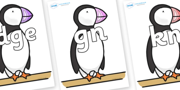 Silent Letters on Puffin to Support Teaching on The Great Pet Sale - Silent Letters, silent letter, letter blend, consonant, consonants, digraph, trigraph, A-Z letters, literacy, alphabet, letters, alternative sounds