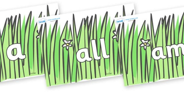 Foundation Stage 2 Keywords on Wavy Grass - FS2, CLL, keywords, Communication language and literacy,  Display, Key words, high frequency words, foundation stage literacy, DfES Letters and Sounds, Letters and Sounds, spelling