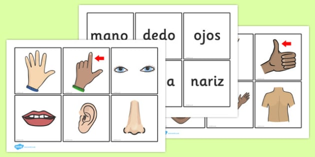 Parts of the Body Word and Picture Matching Cards Spanish - spanish, parts, body, word, picture, matching, cards, match